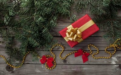Our Favorite Things: Holiday Gift Ideas